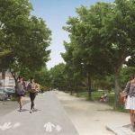 Rede de percursos pedonais de Torres Vedras em construção…